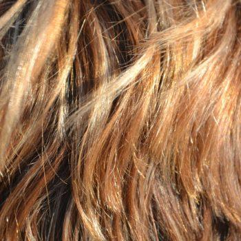 Rodzaje porowatości włosów